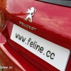 Photo hayon coffre Peugeot 308 II Féline Rouge Rubi 1.6 THP 155 -1-068