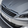 Photo calandre avant Peugeot 308 II - 2-089